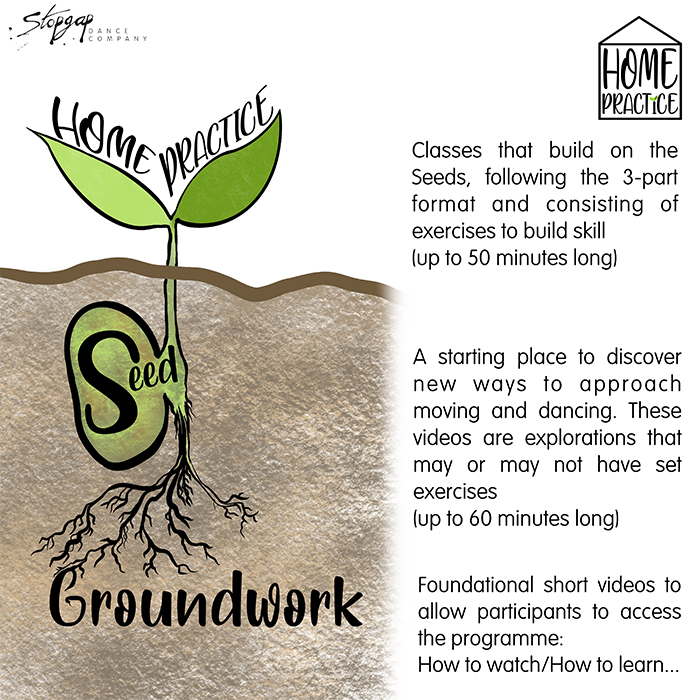 A cross section drawing of a seedling, with roots below and two little leaves above ground. Next to the drawing is text explaining Seed, a collection of videos that introduce and research further into the fundamentals of Inclusive Contemporary Dance for instance; surface work, touch, being seen, dancing with texture and finding mobility.